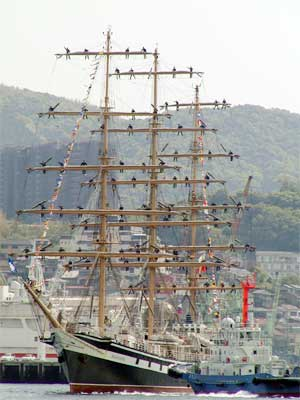 sail04.jpg
