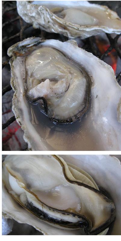 牡蠣を焼く