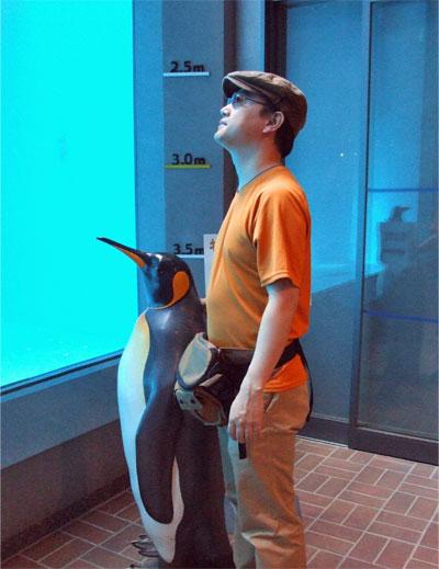 ペンギン水槽を見上げる